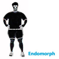 Endomorph male body shape