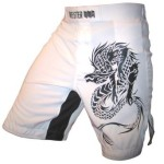 Meister MMA Dragon Shorts